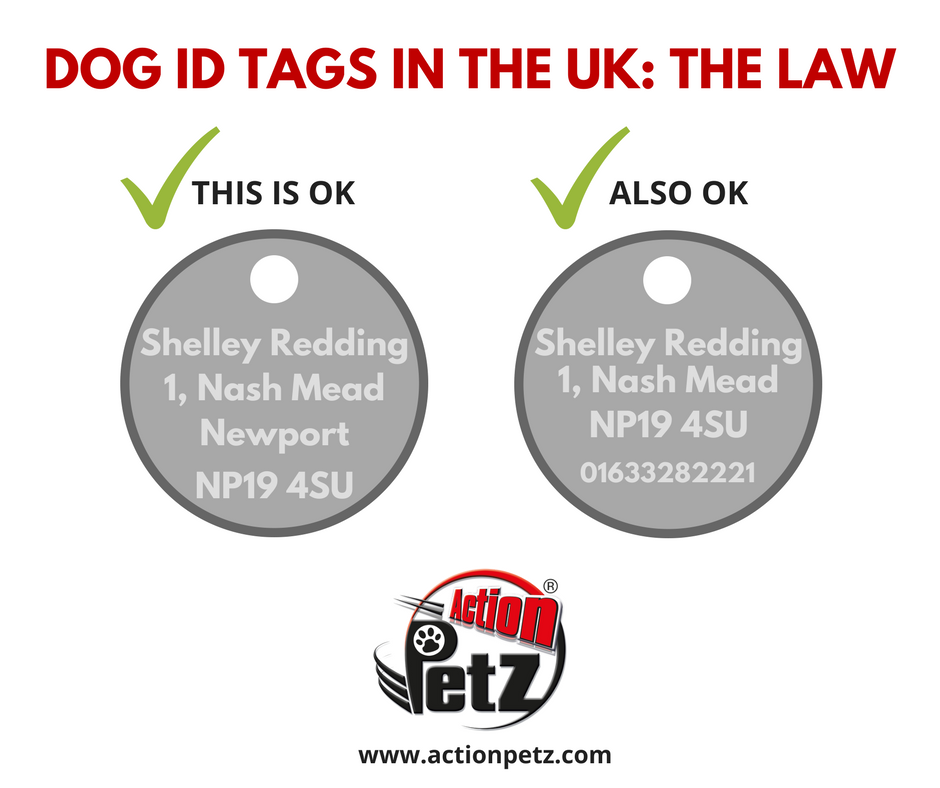 Are You And Your Dog Following The Law Dog Collars And