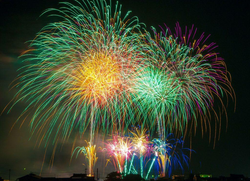 Action Petz Blog Fireworks