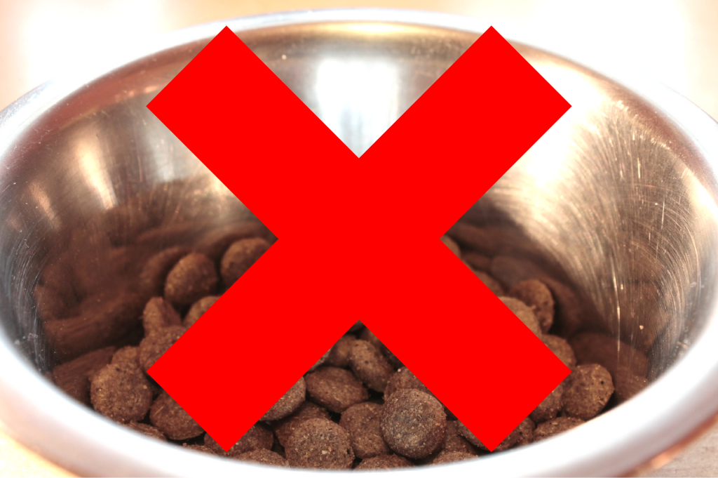 Action Petz Blog Stop Dog Eating Too Fast Bowl of Kibble with big X