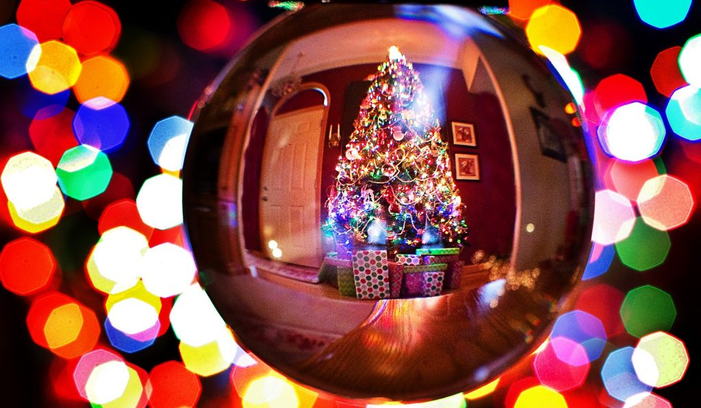 Action Petz Blog Keeping your dog safe and happy this Christmas Christmas tree reflected on bauble